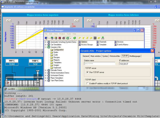 Sielco Sistemi Winlog Buffer Overflow